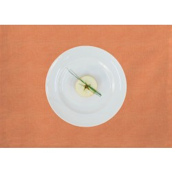 Tischset Apelt 3947 orange (60)